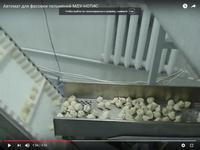 Упаковочное оборудование для фасовки пельменей