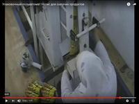 Упаковочный полуавтомат для сыпучих продуктов